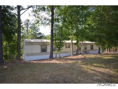 221 Brewer Lake Rd, Double Springs, AL 35553 - #: 103144