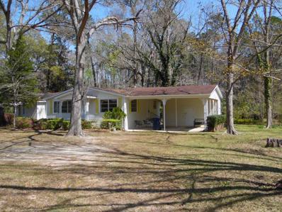 12297 S Cottonwood Rd., Cottonwood, AL 36320 - #: 168849