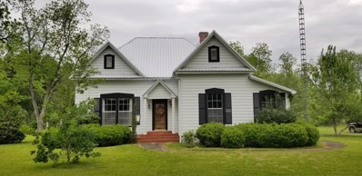 502 North Wiley Ave, Donalsonville, GA 39845 - #: 169383