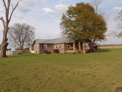 2669 County Road 70, Headland, AL 36345 - #: 171251