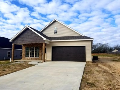 127 Village Lane, Headland, AL 36345 - #: 174719