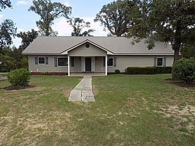 445 S County Road 95, Gordon, AL 36343 - #: 176334