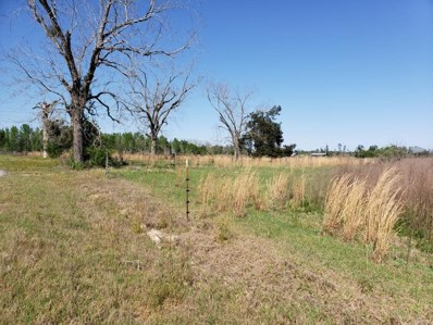S County Road 81, Gordon, AL 36343 - #: 182425