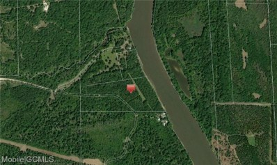 0 Port Of Epes Highway, Livingston, AL 35470 - #: 634806