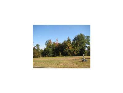 194 Macallister Ridge, Millbrook, AL 36054 - #: 259378