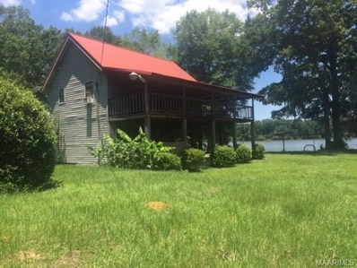 1102 Newport River Road, Lowndesboro, AL 36752 - #: 435613