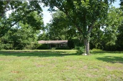 1635 Joe Bruer Road, Daleville, AL 36322 - #: 436548