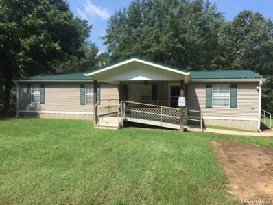 644 County Road 43 Road, Tyler, AL 36785 - #: 439464