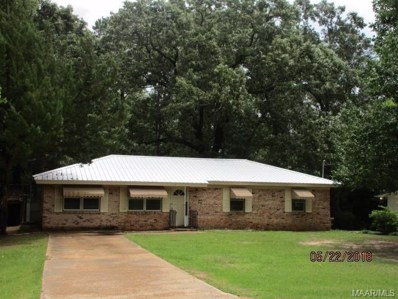 115 Weeping Willow Road, Abbeville, AL 36310 - #: 445154