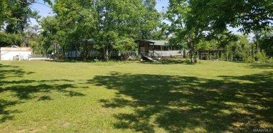 287 County Road 418, Headland, AL 36345 - #: 496064