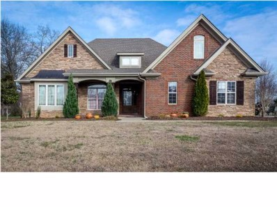 58 Old Orchard Rd, Florence, AL 35634 - #: 391617
