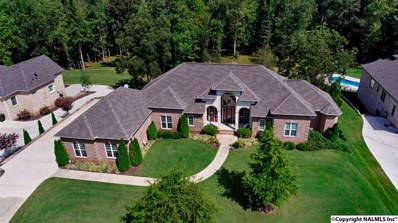 203 Nichols Creek Lane, Huntsville, AL 35806 - #: 1101583
