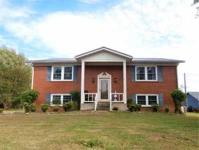 10 Johnson Lane S, Fayetteville, TN 37334 - #: 1105511