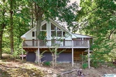 741 Lake Logan Road, Ardmore, TN 38449 - #: 1130591