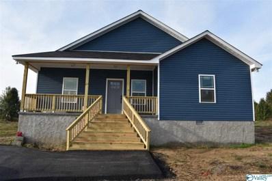 54 County Road 441, Rainsville, AL 35986 - #: 1130626