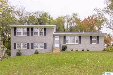 2501 Aspen Avenue, Huntsville, AL 35810 - #: 1131331