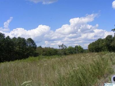 1030 County Road 664, Valley Head, AL 35989 - #: 1143279