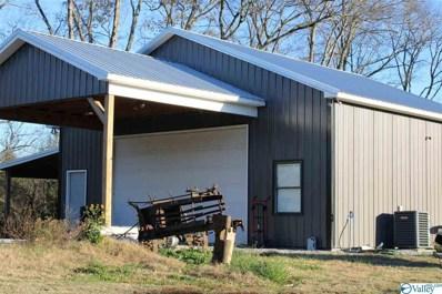 619 Vinta Mill Road, Prospect, TN 38477 - #: 1157272