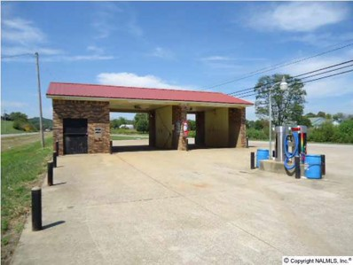 Highway 31, Elkton, TN 38455 - #: 612221