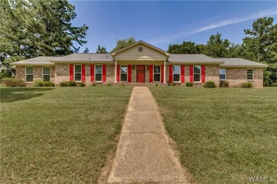908 Lakeside Place, Northport, AL 35473 - #: 127758