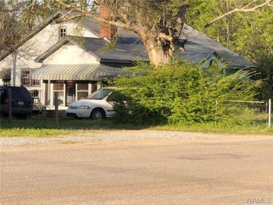 78 Millwood Road, Greensboro, AL 36744 - #: 132334