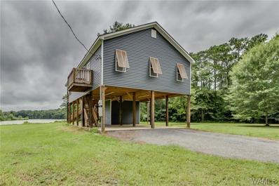 300 Cypress Lake Drive, Pickensville, AL 35447 - #: 134169