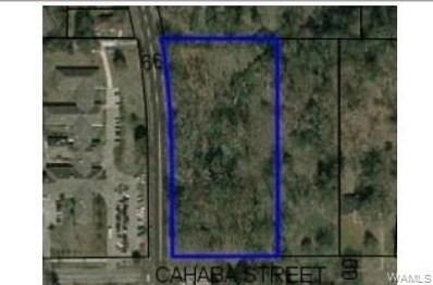 E Cahaba Avenue, Linden, AL 36748 - #: 134267