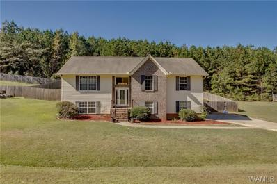 10531 Rolling Valley Drive, Cottondale, AL 35453 - #: 135684