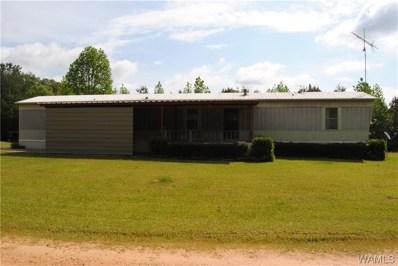 875 Longview Dr, Vernon, AL 35592 - #: 137932