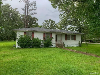 421 South Dvorak Cirlcle, Linden, AL 36748 - #: 139033
