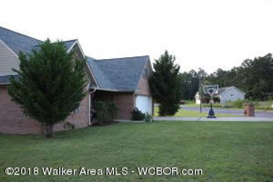 61 Poplar Ridge, Arley, AL 35541 - #: 18-1449