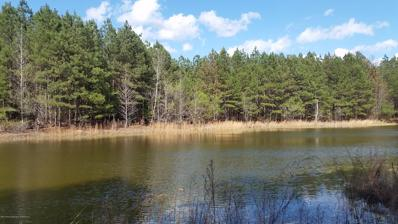 Co Rd 9, Natural Bridge, AL 35577 - #: 19-2037