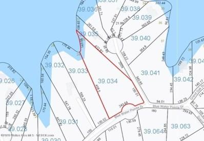 Lot 30 Blue Water Pointe Dr, Jasper, AL 35504 - #: 20-1504