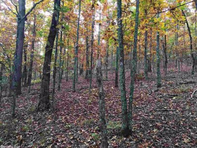 Lot 5 And 6 Arnoldsburg S, Conway, AR 72032 - #: 16031287