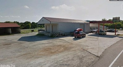 205 Hwy 65, Saint Joe, AR 72675 - #: 17023282