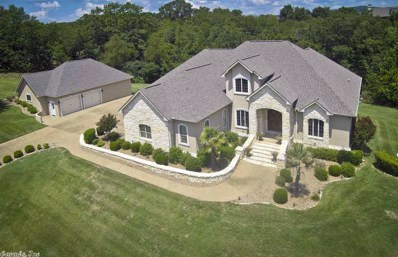 173 Covey Rise Trail, Hot Springs, AR 71901 - #: 18025024
