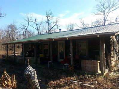 201 Treasure Lane, Mena, AR 71953 - #: 18038796
