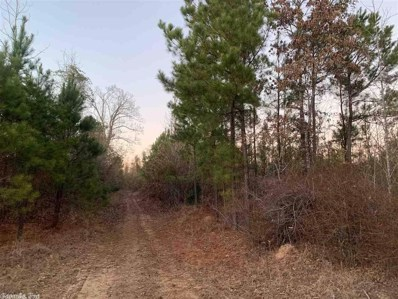 1 Mile South Of Cr #23 \/ Bragg Cemetery Rd, Chidester, AR 71726 - #: 19007718