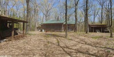 28 Oak, Crocketts Bluff, AR 72038 - #: 19007793