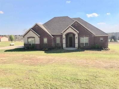 40 Wildwood, Queen City, TX 75572 - #: 19009689