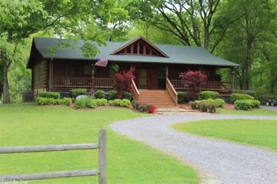 55 Riverwood, Heber Springs, AR 72543 - #: 19019310