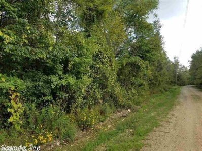 S Highway 229, Traskwood, AR 72167 - #: 19026523