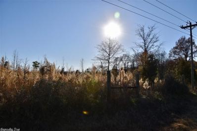 N Highway 41, Winthrop, AR 71866 - #: 20038111