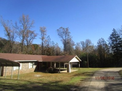 374 County Road 3587, Clarksville, AR 72830 - #: 1029956