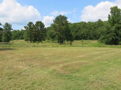 Lot 34 River Mill Pt, HotSprings, AR 71913 - #: 118137