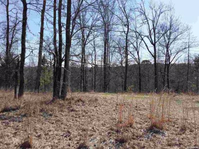 Lot 2872A Scenic Drive UNIT 14 Lots, Hot Springs, AR 71913 - #: 125913