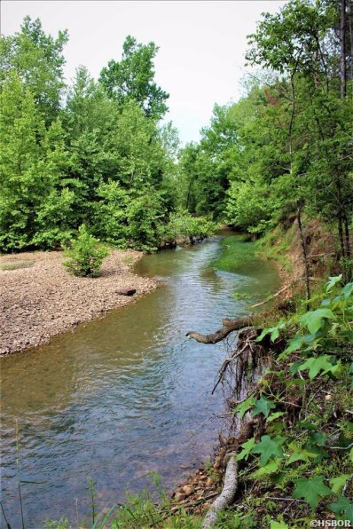 0 Saline Creeks Unit Hwy 26, Delight, AR 71940 - #: 134463