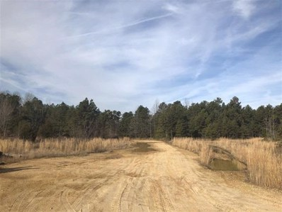 40 Acres Greene 729 Road Tract 2, Paragould, AR 72450 - #: 10079289