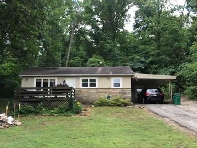 153 E Lakeshore, Cherokee Villag, AR 72529 - #: 10081073