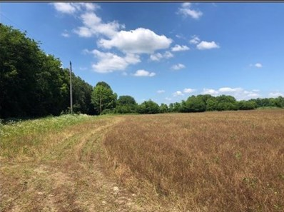 87 Acres Law 216, Black Rock, AR 72415 - #: 10088594